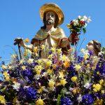 Führung Bamberger Gemüse - Christus als Häcker
