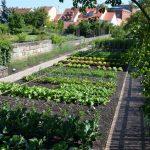 Gärtner- und Häckermuseum Bamberg - Garten - Foto: © Dr. Hubertus Habel